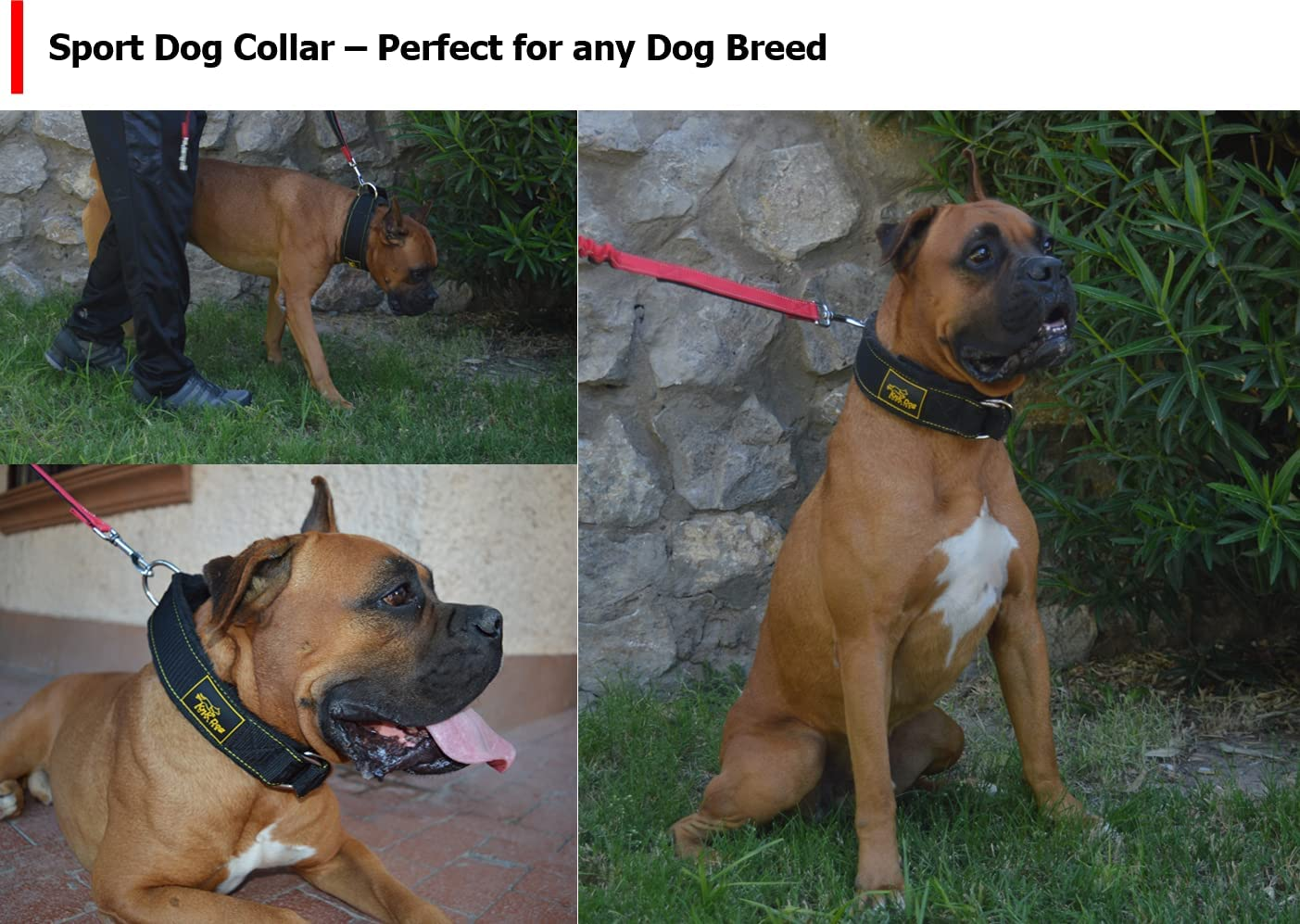 Sport Tactical Dog Collar