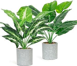 ZIFTY 2-Pcs Artificial Potted Plants Mini Fake Plastic Plants Small Faux Plants for Home Office Party Desk Decoration