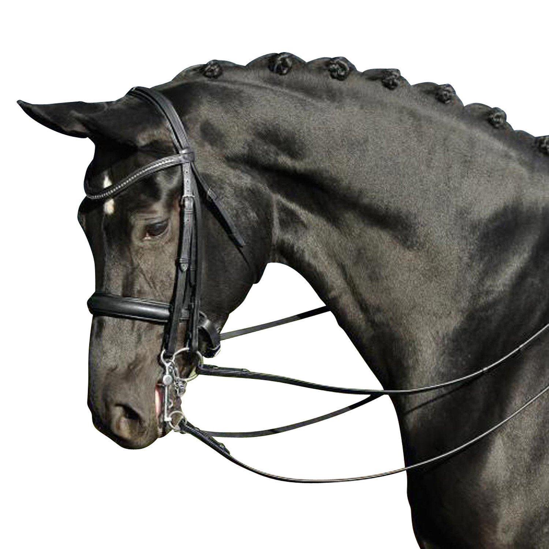 BUSSE(ブッセ) グランプリ 大勒頭絡 セット(手綱付き) ブラック BU-HA-121802 ブラック フルサイズ   B00UAODOLS