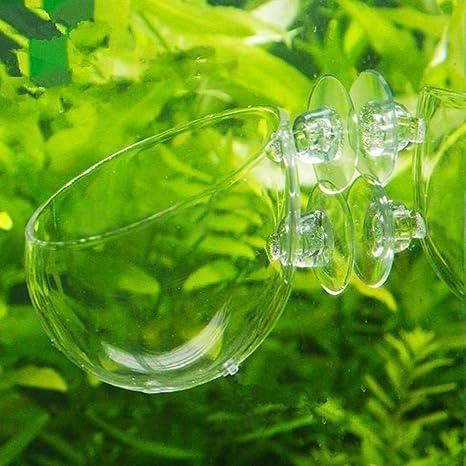 Mini acuario acuario acuático cristal maceta soporte de vaso para acuario paisaje con costuras y agujeros