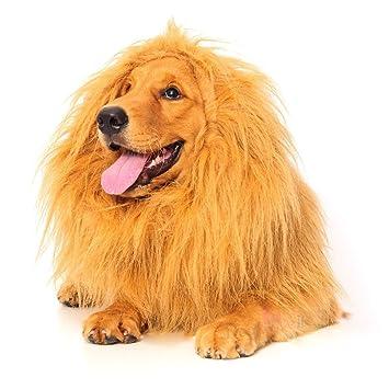Dogloveit León melena para perro, disfraz de perro con regalo [León Cola] León