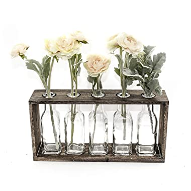 Funsoba Rustic Vintage Hydroponic Flower Vases Set in Wooden Rack 5 Bottles (Type B 5 Vase Set)