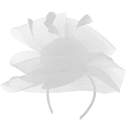 Amazon.com: Algo Especial Fancy plumas acanalado tocados ...