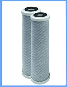 CFS COMPLETE FILTRATION SERVICES EST.2006 WHKF-DB1 Compatible Undersink Water Filter Replacement Cartridge 2 Pack