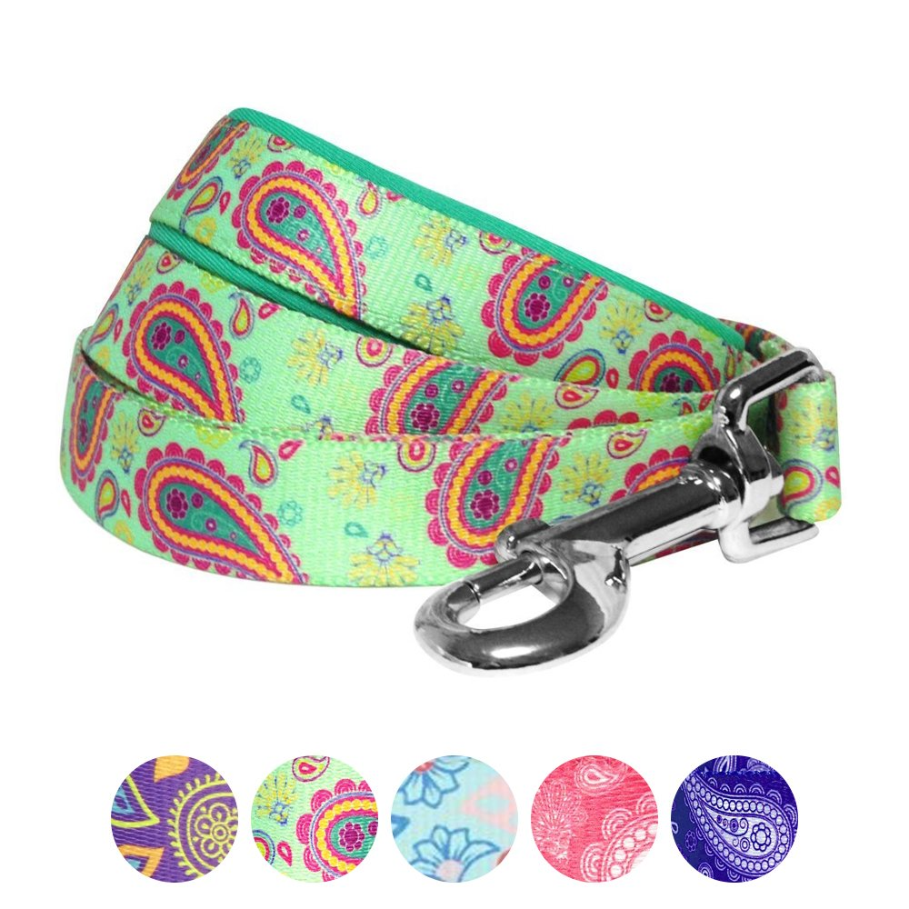 Blueberry Pet 5 Colors Paisley Flower Print Dog Leash with Soft & Comfortable Handle, 5 ft x 5/8'', Emerald Green, Small, Leashes for Dogs