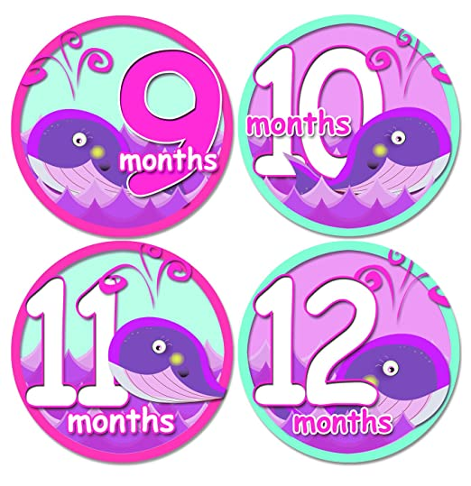 e53774ac0d6d3 Amazon.com : GIRL BABY WHALES PURPLE PINK GREEN Baby Month Onesie Stickers Baby  Shower Gift Photo Shower Stickers, baby shower gift by OnesieStickers : Baby