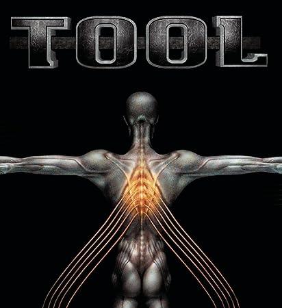 Tool - Salival - Amazon.com Music