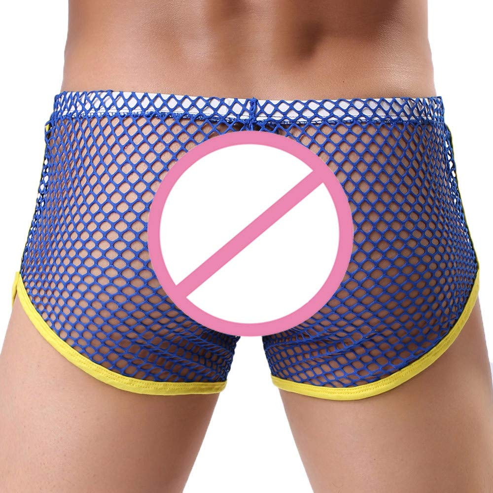 Hunzed Men【Net Boxer】 Mens Mesh Sheer Transparent See Through Fishnet Shorts Breathable Underpants Blue huz