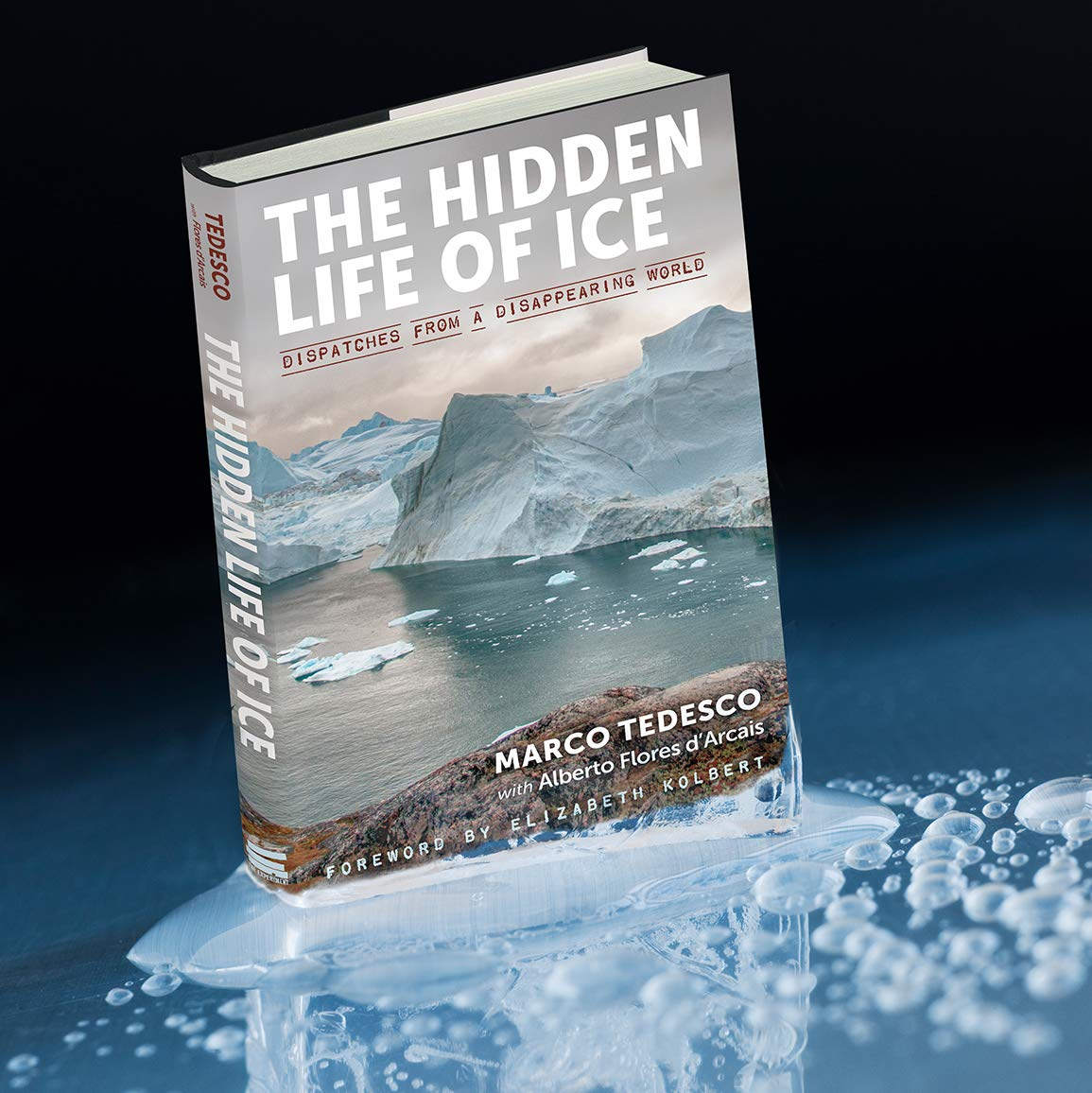 The Hidden Life of Ice: Dispatches from a Disappearing World: Tedesco, Marco,  Flores d'Arcais, Alberto, Muir, Denise, Kolbert, Elizabeth: 9781615196999:  Amazon.com: Books