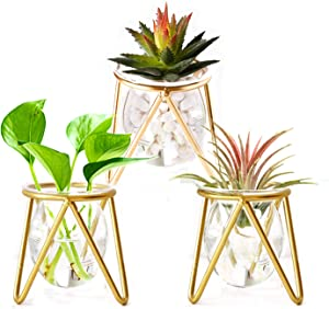 TIMELIVE Set of 3 Mini Gold Metal Glass Vase Holder,Geometric Iron Display Stands,Air Plants Hydroponic Air Fern Planter Terrariums for Home Office Desktop Décor