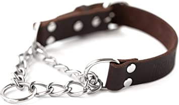 Mighty Paw Leather Collar