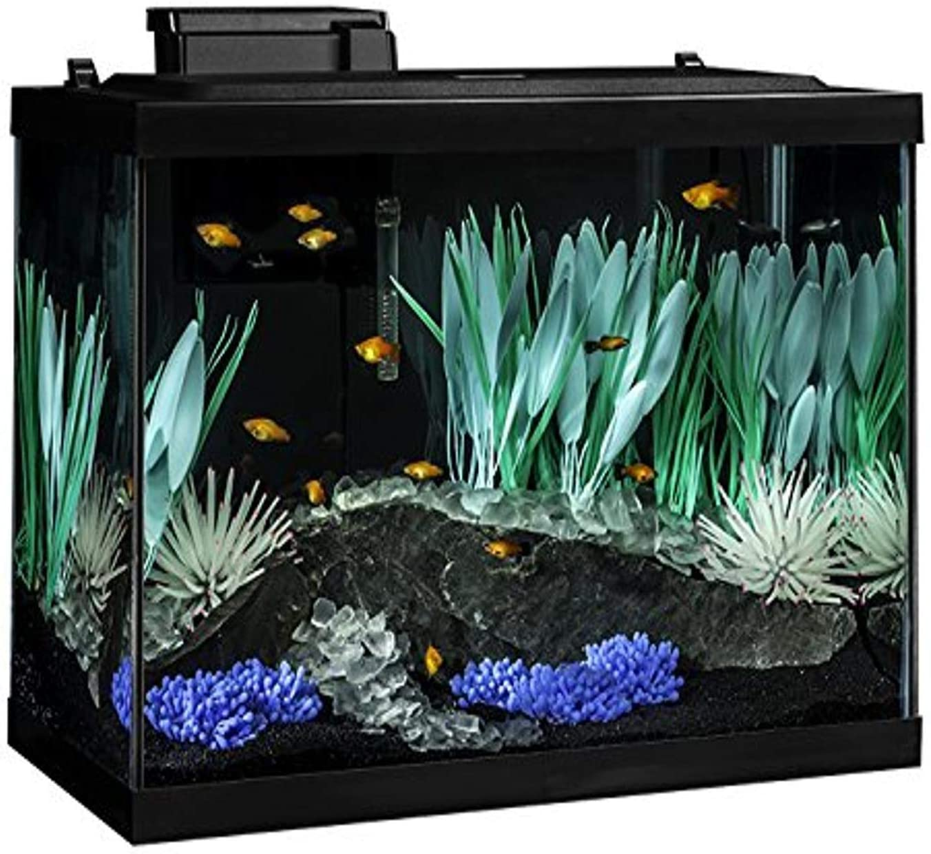 Tetra Complete Aquarium Kit