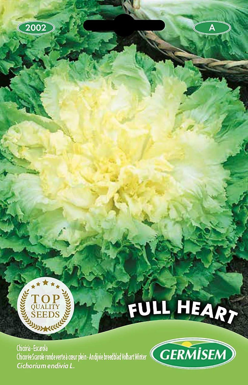 Germisem Full Heart Semillas de Achicoria 4 g