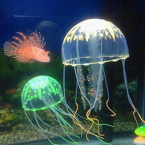 Pecera medusas