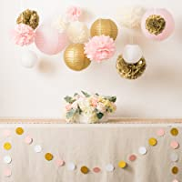 Ling's moment Pink and Gold Party Decorations, Pom Poms Flowers, Paper lantern, Circle Paper Garland, for 1st Birthday Girl Decorations Bridal Shower Baby Shower Wedding & Party Décor