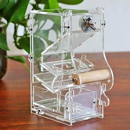 M.Z.A - Comedero automático de Semillas de pájaro, dispensador de ...