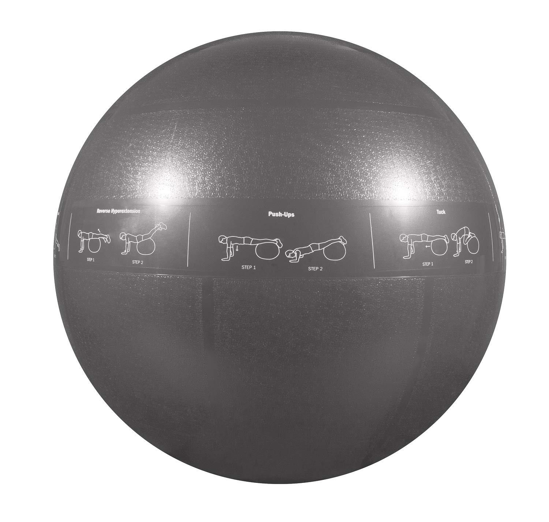 GoFit Professional Stability Ball
