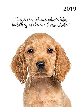 Amazon.com: 2019 Adorable Perros Acolchado Agenda - 5.9 x ...