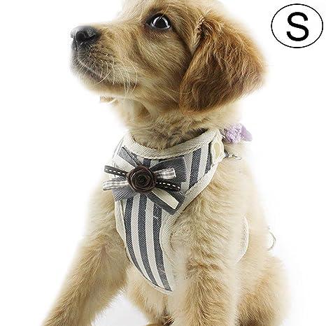 Amazon.com: AOLVO Kit de arnés del perro, máxima comodidad y ...
