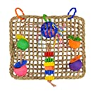 Super Bird Creations Seagrass Foraging Wall Hanging Bird Toy