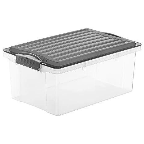 Rotho – Caja para Guardar Compact Transparente con Tapa, plástico, Transparente y Gris,