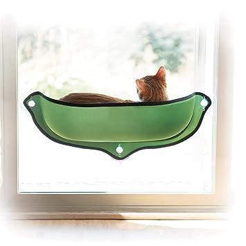 Ducomi Kitties - Hamaca de Gato para Ventanas con ventosas Fuertes y Resistentes - Carga Máxima 10 kg Proporciona Gatos - Incluye cojín Suave y cálido: ...