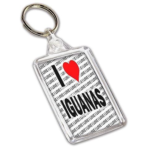 Llavero I Love Iguanas - Regalo - cumpleaños - Navidad ...