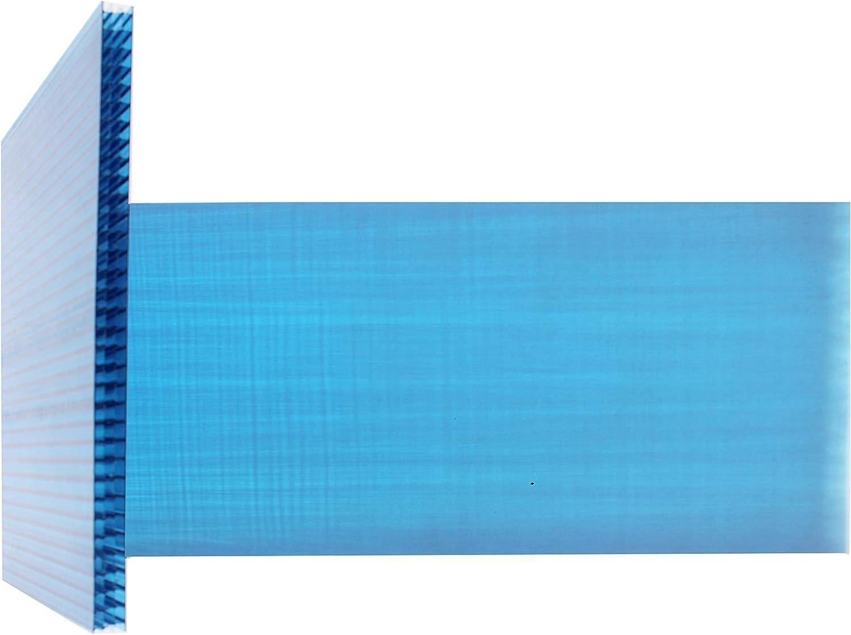 PLACA DE POLICARBONATO ALVEOLAR MAKROLON MULTI PAREDE 2100x1000x10mm AZUL: Amazon.es: Bricolaje y herramientas