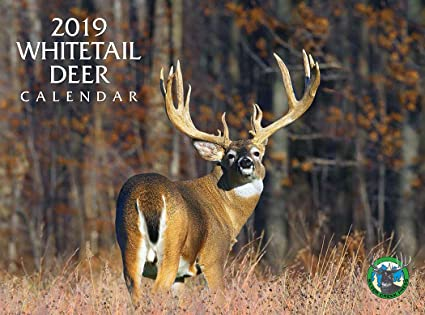 Deer Calendar 2019 Amazon.: 2019 Whitetail Deer Calendar : Office Products