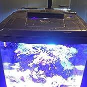 Amazon Com Hipargero Led Aquarium Light Aquarium Led