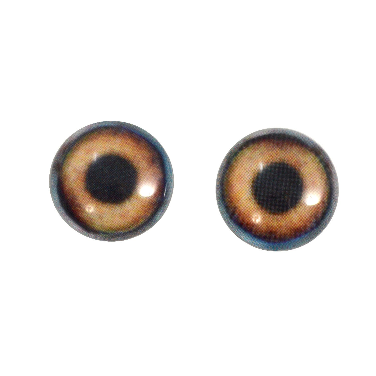 16mm Glass Brown Dog Eyes Animal Pair Realistic Taxidermy Sculptures or Jewelry Making Crafts Set of 2