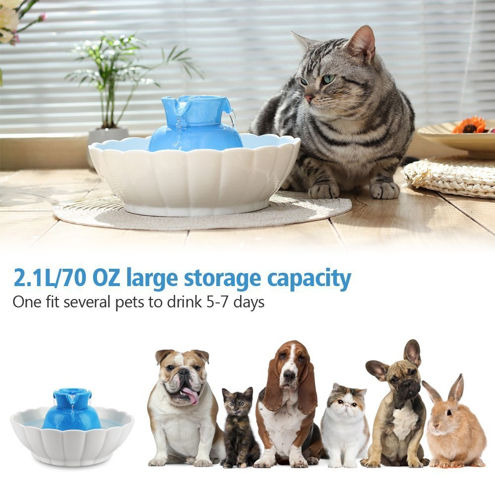 IPETTIE Tritone Ceramic Pet Drinking Fountain丨Ultra Quiet, Way Better Than Plastic丨Water Fountains for Cats and Dogs 2.1 Liters Pet Water Dispenser with Replacement Filters and Foam (Blue) by IPETTIE (Image #7)