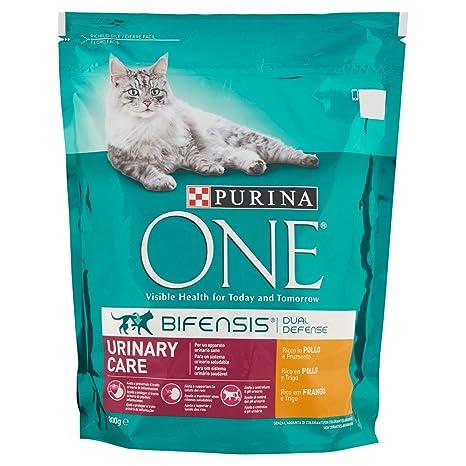 Purina ONE Bifensis Comida para Gatos para Cuidado Urinario Rico en Pollo y Trigo - Paquete