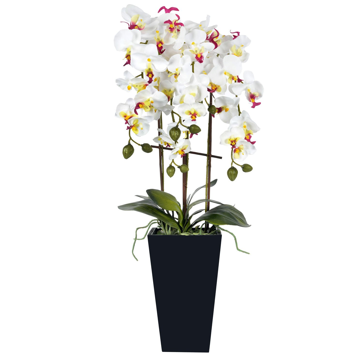 Brand new Homescapes Oriental Style White Orchid in a Contemporary Black Pot  IL45