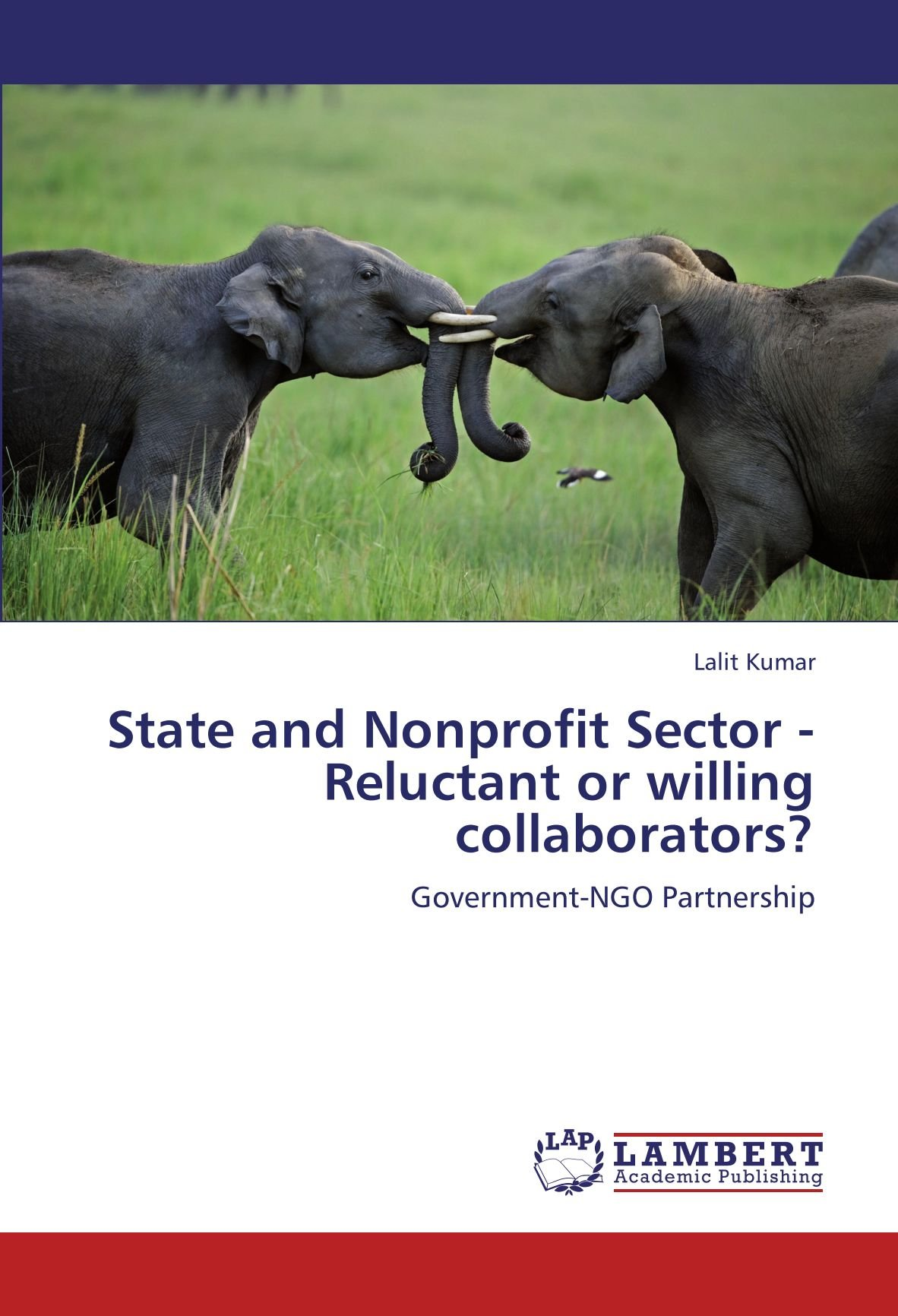 State and Nonprofit Sector - Reluctant or willing collaborators?: Government-NGO Partnership pdf epub