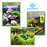 Aqualantis Aquarium Magnetic Fish Tank