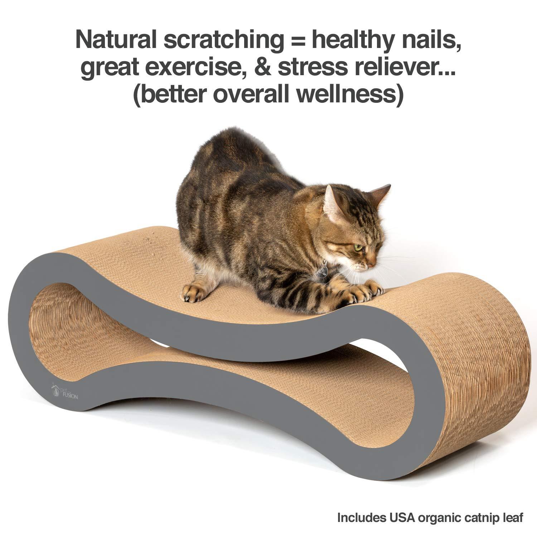 El Mejor Lounge para Arañazos de Gatos de PetFusion. [Cartón y Construcción Superiores]: Amazon.es: Productos para mascotas