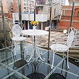 忆凡 户外庭院铁艺休闲桌椅洽谈桌椅子套件圆桌咖啡茶几组合桌子 (一桌两椅-白色)
