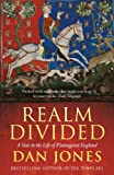 Realm Divided: A Year in the Life of Plantagenet England