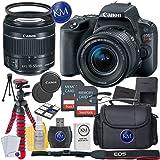 Canon EOS Rebel SL2 DSLR Camera w/ 18-55mm Lens + 2 x 32GB Card + Basic Photo Accessory Bundle