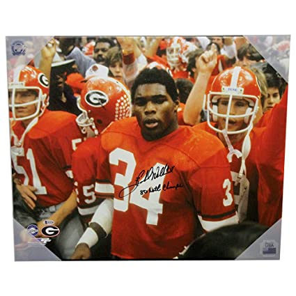 9a4451d81 Image Unavailable. Image not available for. Color  Herschel Walker Georgia  Bulldogs Autographed Signed ...