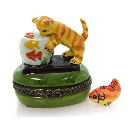 Pecera de oro de gato con caja de phb 626