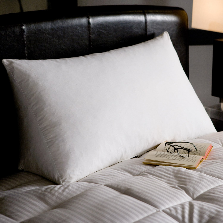 Amazon.com: Reading Wedge Triangle Pillow, Bonus Acid Reflux Help ...