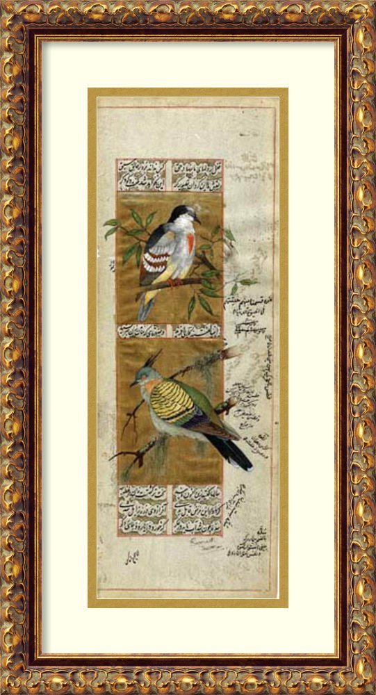 Framed Art Print 'Bird Pair from India I' by Ramesh Sharma
