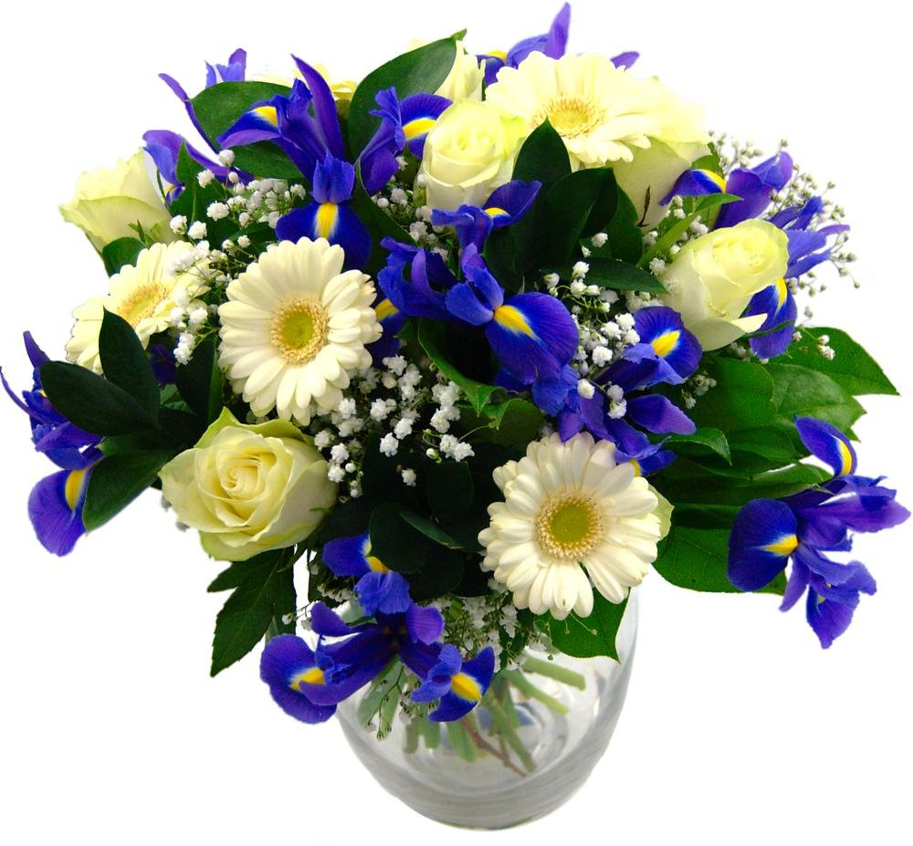 Clare Florist Baby Boy Flowers Bouquet - Fresh Blue iris, White Roses and Gerbera to Welcome a New Baby Boy