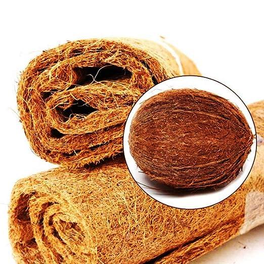 Amazon.com: Hamiledyi - Alfombra de fibra de coco para ...