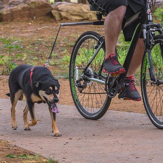Babysbreath17 Correa de acero inoxidable de la bici del animal ...