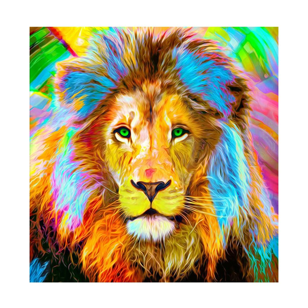 DIY 5D Diamond Painting Kits Full Drill, ACTIMEX Rhinestone Crystal Embroidery Pictures Cross Stitch for Home Wall Decoration Animal Eagle 3038 cm (11.814.9 inch) Aitmexcn