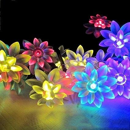 Amazon.com: 365mx® Lotus Flowers Led String Garland light ...