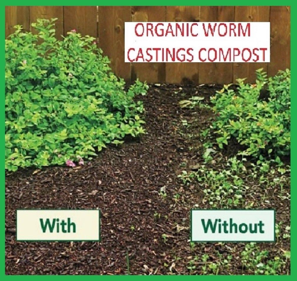 Original Organics - Compost de lombriz, 100 % ecológico con ...